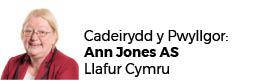 Ann Jones AC (Cadeirydd)